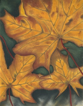 'Golden Leaves'