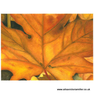 'Burnished Bronze' limited print (large)