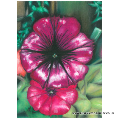 'Enchanting Amethyst' limited print (large)