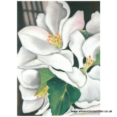 'Orchard Blossom' print (large)