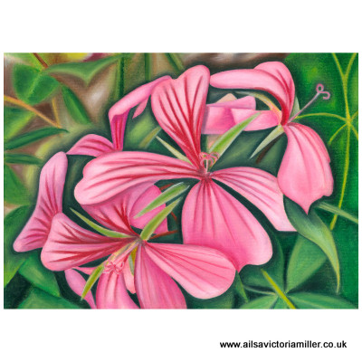 'Wallington Wallflower' print (large)