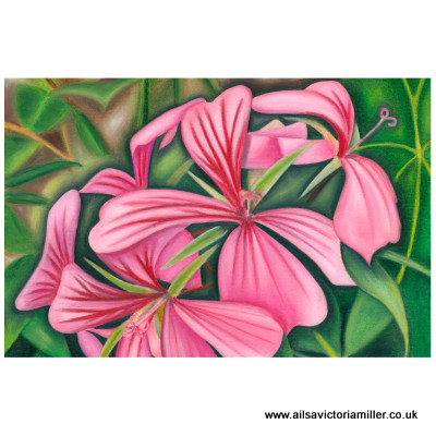 'Wallington Wallflower' print (small)