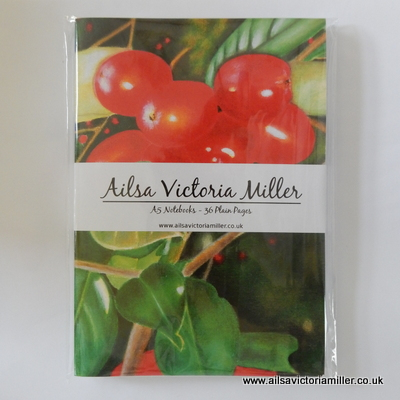'Winter Jewels' Notebooks (Pack of 3)