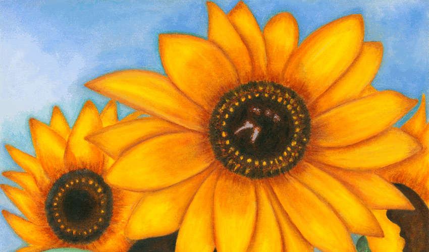 Sunny Side Up original pastel artwork